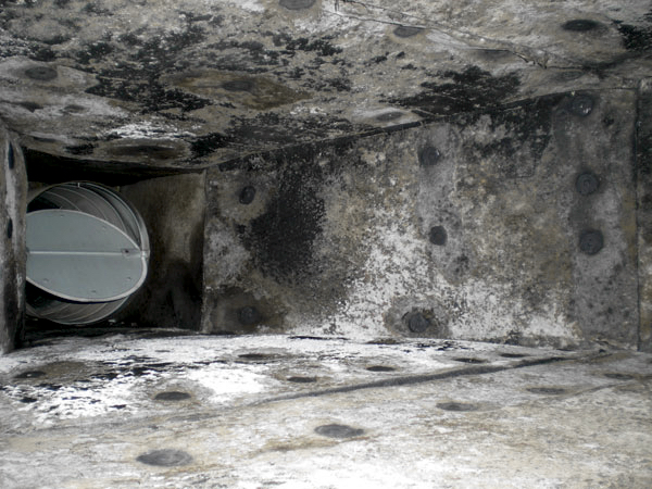Mold in ductwork